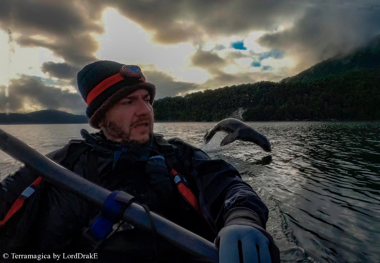 Circunnavegacion en Kayak a la Isla Magdalena lobo saltando