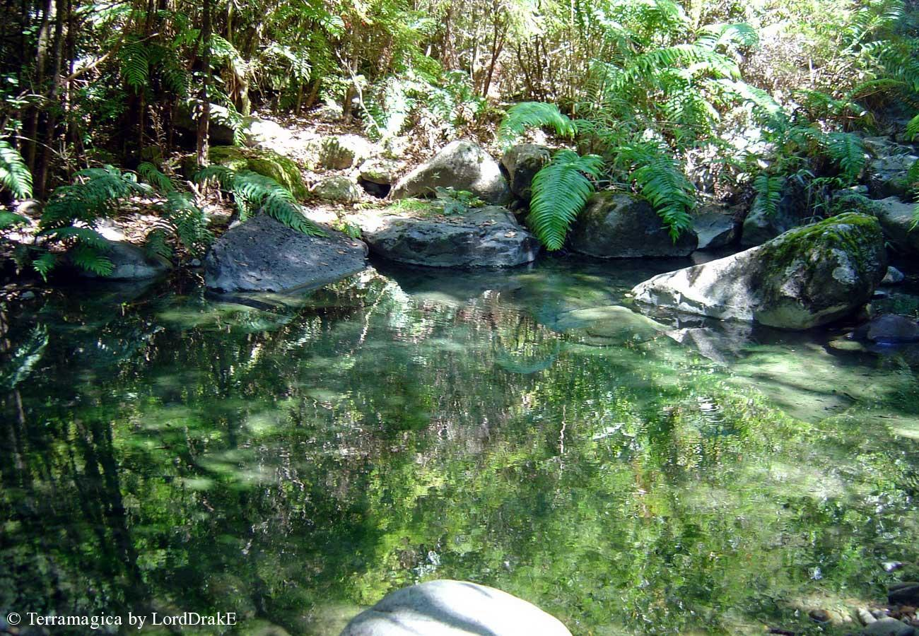 Expedicion en Kayak a los Fiordos Pozones del Rio Termal Porcelana