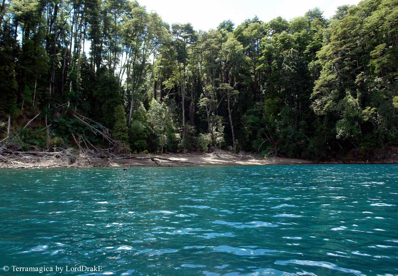 Travesia en Kayak al Lago Todos los Santos Riberas del Lago