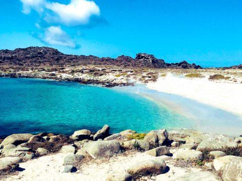 Travesia en Kayak a la Isla Damas portada