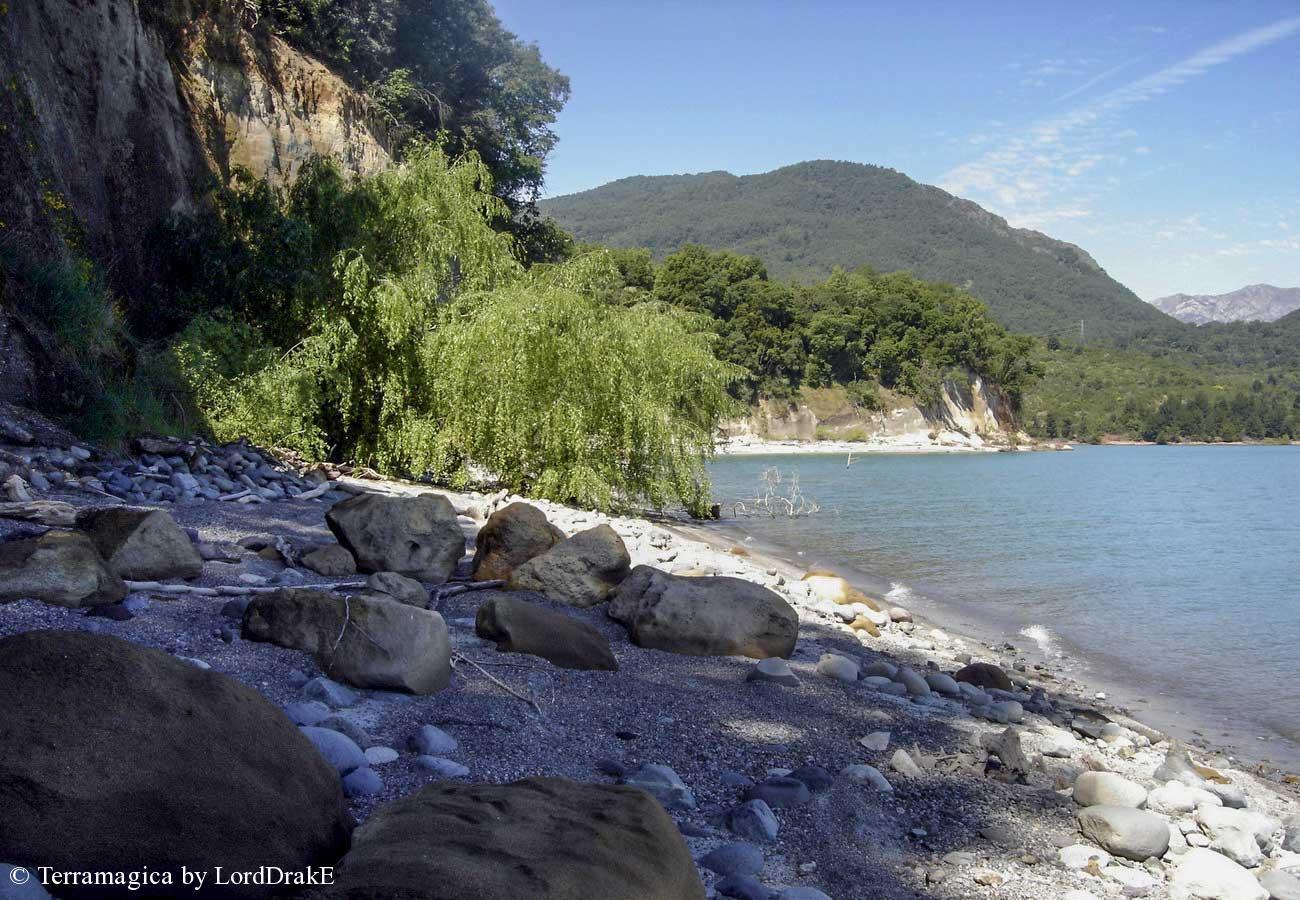 Travesia en Kayak al Lago Colbun sauces llorones