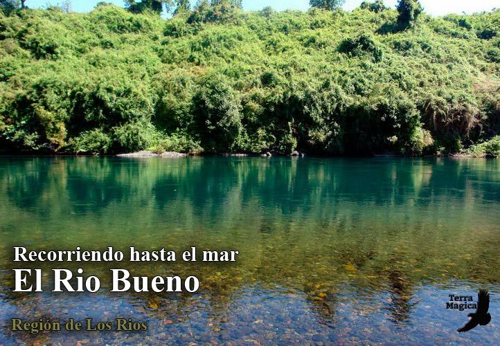 Descenso en Kayak del Rio Bueno
