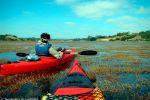 Travesia en Kayak al Lago Budi remando entre algas